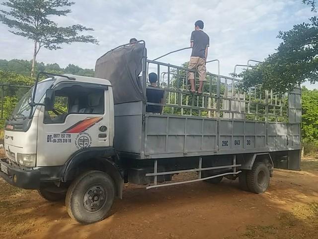 Vận tải hàng hóa xe 5 tấn giá Rẻ